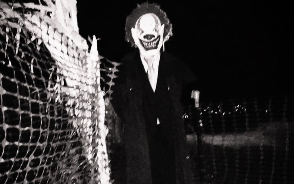 Clown Creeper